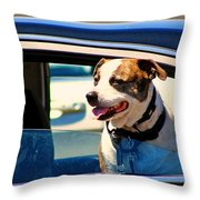 Dog In Car Throw Pillow