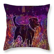 Dog Labrador Animal Canidae Canine  Throw Pillow