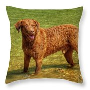 Dog Named Max Throw Pillow