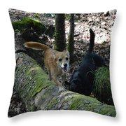 Dog On A Log Throw Pillow