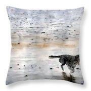 Dog On Beach Throw Pillow