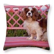 Dog On Pink Bench Throw Pillow