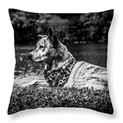 Dog On The Lake Throw Pillow