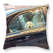 Dog On The Move Throw Pillow