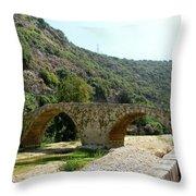 Dog River Throw Pillow