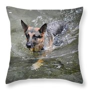 Dog Swimming In Cold Water Throw Pillow