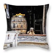 Dog Tavern With Oranges Throw Pillow