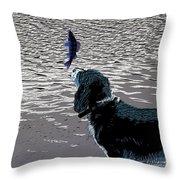 Dog Vs Perch 3 Throw Pillow