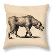Dog With Rabies, Engraving, 1800 Throw Pillow