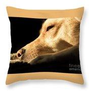 Doggy Dreams Throw Pillow
