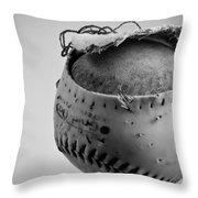 Dog's Ball Throw Pillow