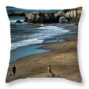 Dogs Beach Santa Cruz California Nature  Throw Pillow