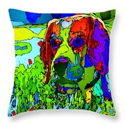 Dogs Can See In Color Throw Pillow