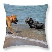 Dogs In Lake Michigan Throw Pillow