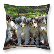 Dogs. Let Us Out #2 Throw Pillow