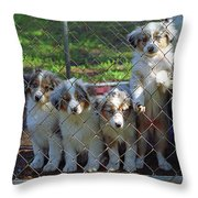 Dogs. Let Us Out #3 Throw Pillow