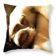 Dog's Paws Curled Up Throw Pillow