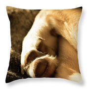 Dogs Paws Throw Pillow