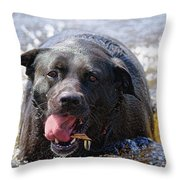 Dogs Sticks And Ponds Throw Pillow