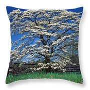 Dogwood And Rail Fence Throw Pillow