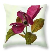 Dogwood Ballet 1 Throw Pillow