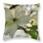 Dogwood Bloom Throw Pillow