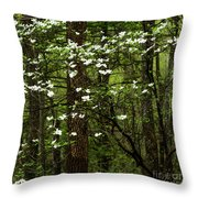 Dogwood Blooming In Forest Throw Pillow
