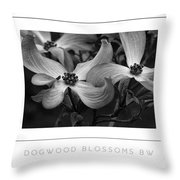 Dogwood Blossoms Bw Poster Throw Pillow