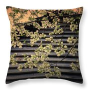 Dogwood Cabin, Smoky Mountains, Tennessee Throw Pillow