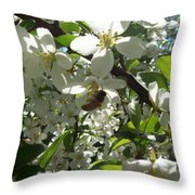 Dogwood Daze Throw Pillow by Carrie Viscome Skinner
