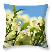 Dogwood Flowers Art Prints Canvas White Dogwood Tree Blue Sky Throw Pillow