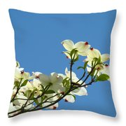 Dogwood Flowers Art Prints White Flowering Dogwood Tree Baslee Troutman Throw Pillow