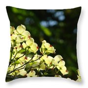 Dogwood Flowers White Dogwood Tree Flowers Art Prints Cards Baslee Troutman Throw Pillow