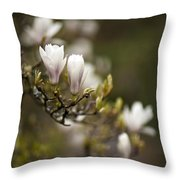 Dogwood Gathering Throw Pillow