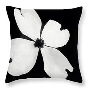 Dogwood In Days Now Past Throw Pillow