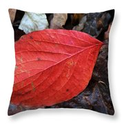 Dogwood Leaf Throw Pillow
