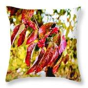 Dogwood Leaves Throw Pillow
