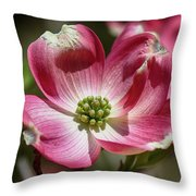 Dogwood Spring Throw Pillow
