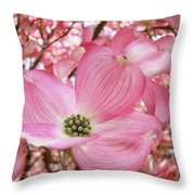 Dogwood Tree 1 Pink Dogwood Flowers Artwork Art Prints Canvas Framed Cards Throw Pillow