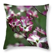 Dogwood Tree Throw Pillow
