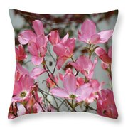 Dogwood Trees Flower Blossoms Art Baslee Troutman Throw Pillow