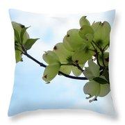 Dogwoods Facing The Sky Throw Pillow