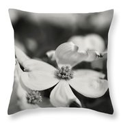 Dogwoods In Black And White Throw Pillow