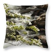 Dogwoods Over Cascades  Throw Pillow