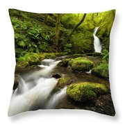 Dolgoch Falls Throw Pillow