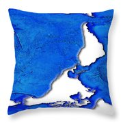 Dolphin World Map Throw Pillow