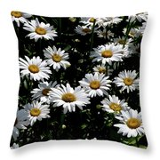 Dollop Of Daises Throw Pillow