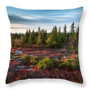 Dolly Sods Wilderness Area West Virginia Throw Pillow