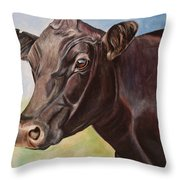 Dolly The Angus Cow Throw Pillow