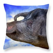 Dolly Under The Smiling Moon Throw Pillow